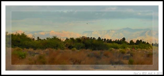 EFP-Sunset Park Landscape