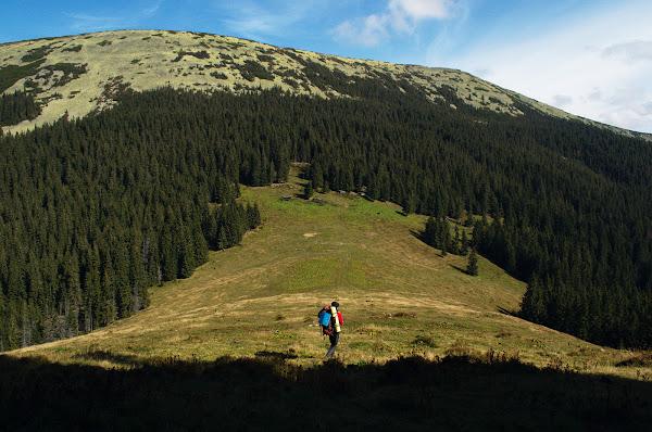 карпаты горганы полонина горы