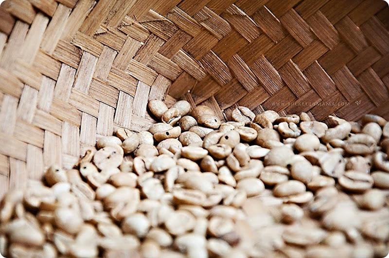 Coffee-beans-(4)