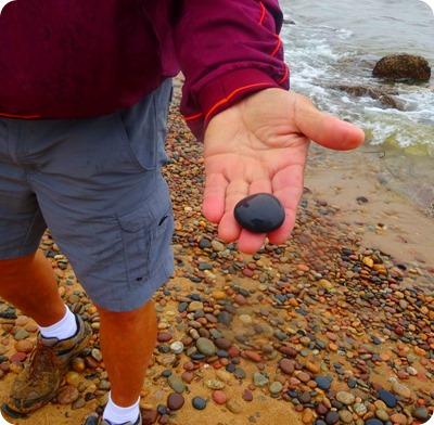 Petosky Stones