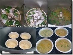 alitas de pollo con salsa de soja y guarnicion de arroz1