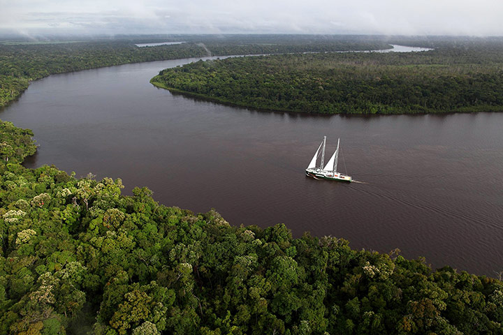 Greenpeace's newest Rainbow Warrior vessel sails through the Amazon. The campaign group is lobbying for a zero deforestation law. Photograph: Rodrigo Baléia/Greenpeace