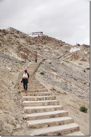 Ladakh20