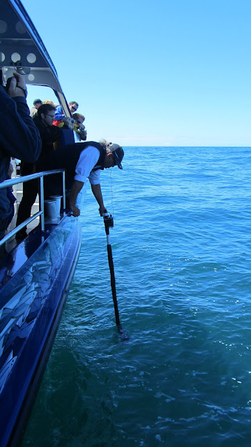 Our captain using a hydrophone to search for Moby Dick.