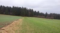 20150417_allgemein_besichtigung_sommerlagerplatz_171535_neu.jpg