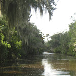 Our Airboat Adventure ride in New Orleans to see the swamps and gators 07242012-60