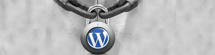 How Do I Know If My WordPress Site is Vulnerable?