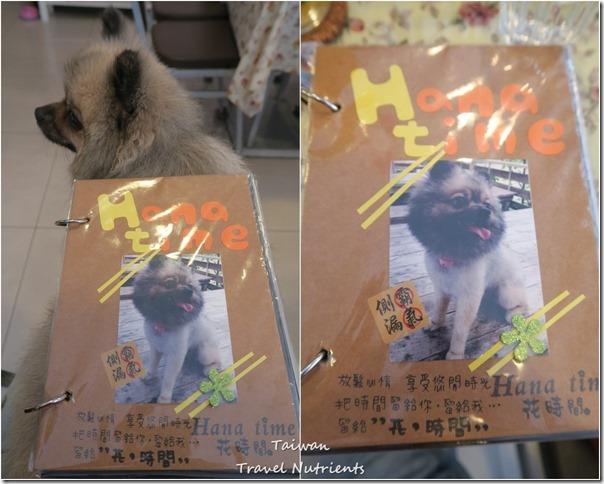 Hana Time寵物友善餐廳 (66)