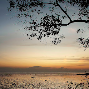 D' Muara by Mohd Afiq - Landscapes Waterscapes