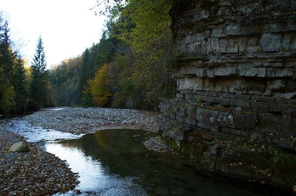 карпаты осень река