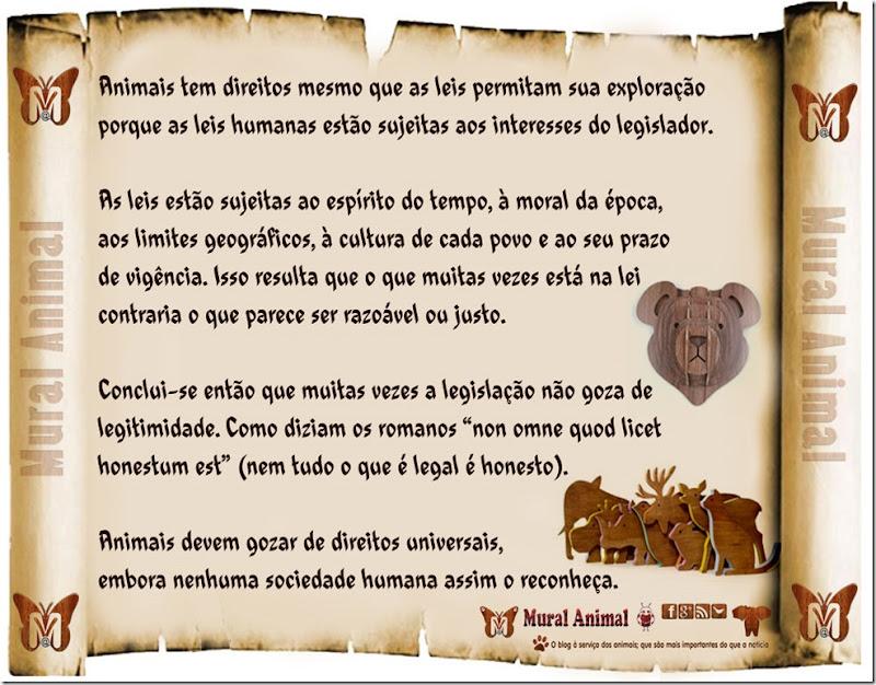 direitos-animais-declaracao