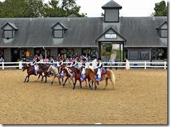 KY horse park 128