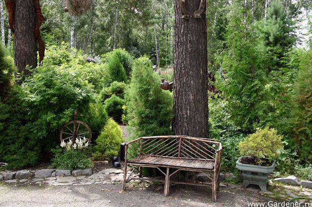 Фото ботанического сада новосибирск