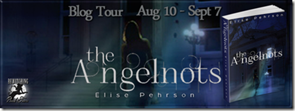 The Angelnots Banner 851 x 315_thumb