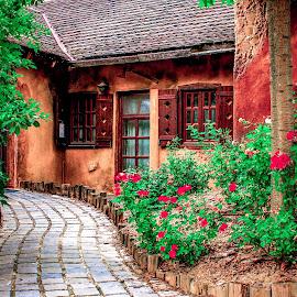 *** by Fotósok és Fotómodellek F.Tom - Buildings & Architecture Homes ( bikal, hungary, home, ftom, sweet home, bikal-hungary,  )