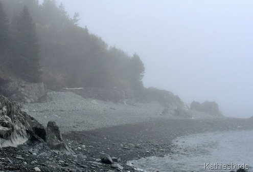 3. foggy coastline-kab