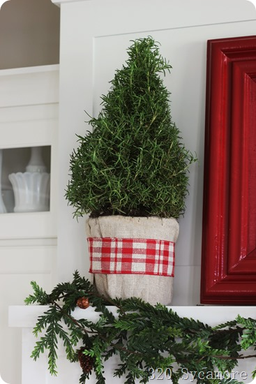 rosemary tree with linen & plaid