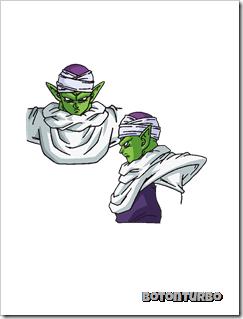 Piccolo (1)