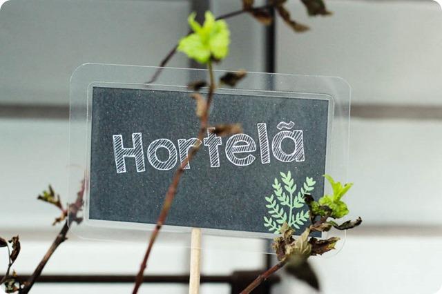 Horta-6076