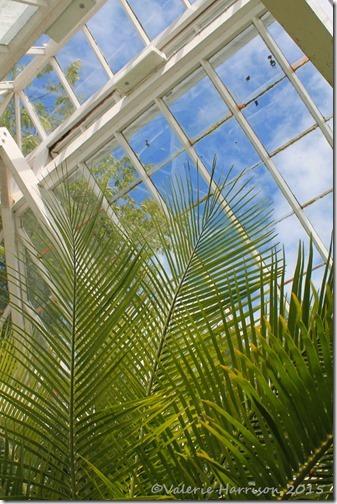 16-greenhouse