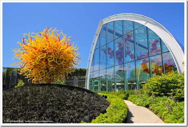 150626_Seattle_ChihulyGardenGlass_0037