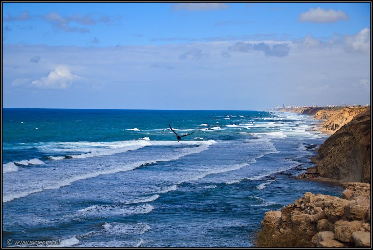 фото холодное море