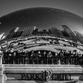 The Bean Scene by Jebark Fineartphotography - Buildings & Architecture Statues & Monuments ( sculpture, skyline, reflection, monochrome, black and white, art, buildings, architecture, the bean, chicago, crowd, people )