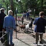 Open dag 3 oktober 2015 dierenweide Nieuwe Pekela - Foto's Johan de Groot