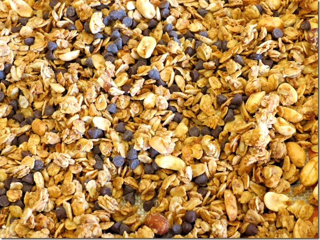 Peanut Butter and Chocolate Chip Granola (Gluten Free)