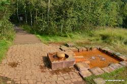 Územím prochází zpoplatněná naučná stezka. V rezervaci se nachází také vzácní ptáci a cenná slatinná a rašelinná vegetace (bařička bahennírosnatka, okrouhlolistá aj.)