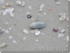 Barefoot Beach and Taste of Bonita 023