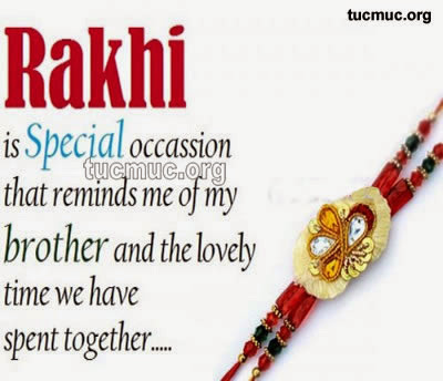 Raksha Bandhan Comments