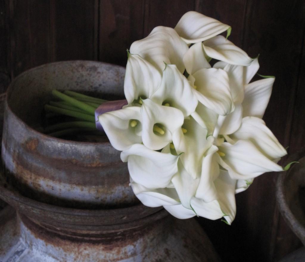 Callas & Hydrangea Wedding