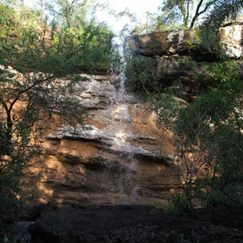 "The ""Cañadón de Profundidad"" Provincial Park and the captivating atmosphere of the jungles of Urunday."