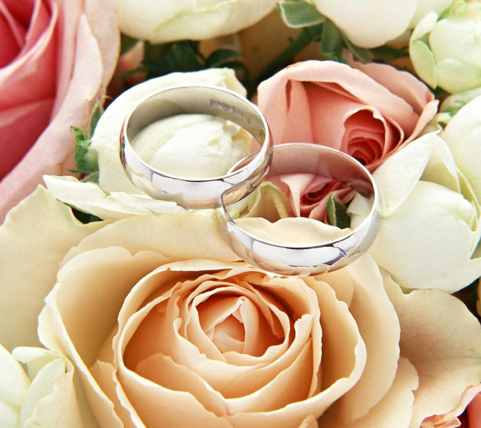 wedding rings wallpaper