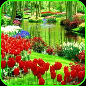 Garden Wallpaper For PC / Windows 7/8/10 / Mac – Free Download