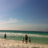 A pelican flying over the water in Destin FL 03192012b