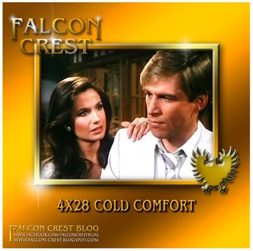 4x28 Cold Comfort