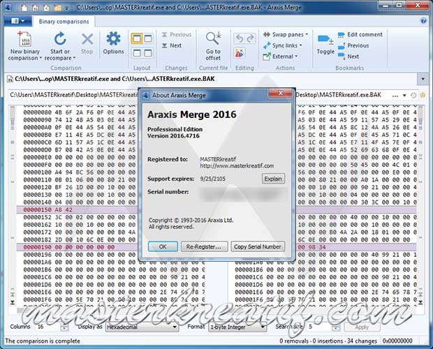Araxis Merge 2016 Professional