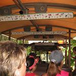 The Kilimanjaro Safari in Africa in the Animal Kingdom in Disney 06092011a