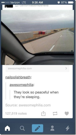 silly-tumblr-comments-018