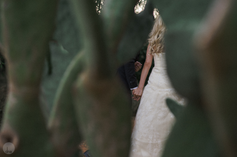 Paige and Ty wedding Babylonstoren South Africa shot by dna photographers 330.jpg