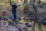 Pasando el rio