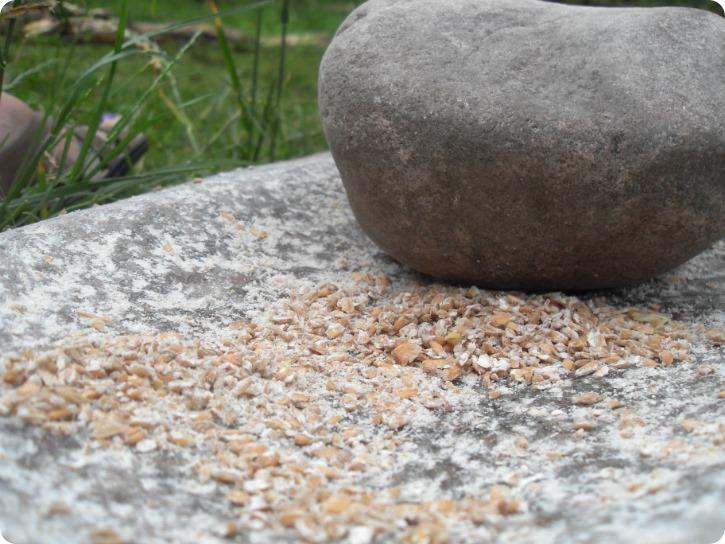 At grutte korn til mel - Sagnlandet Lejre