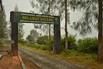 witamy w parku narodowym