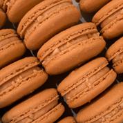 salted peanut macaronnotext