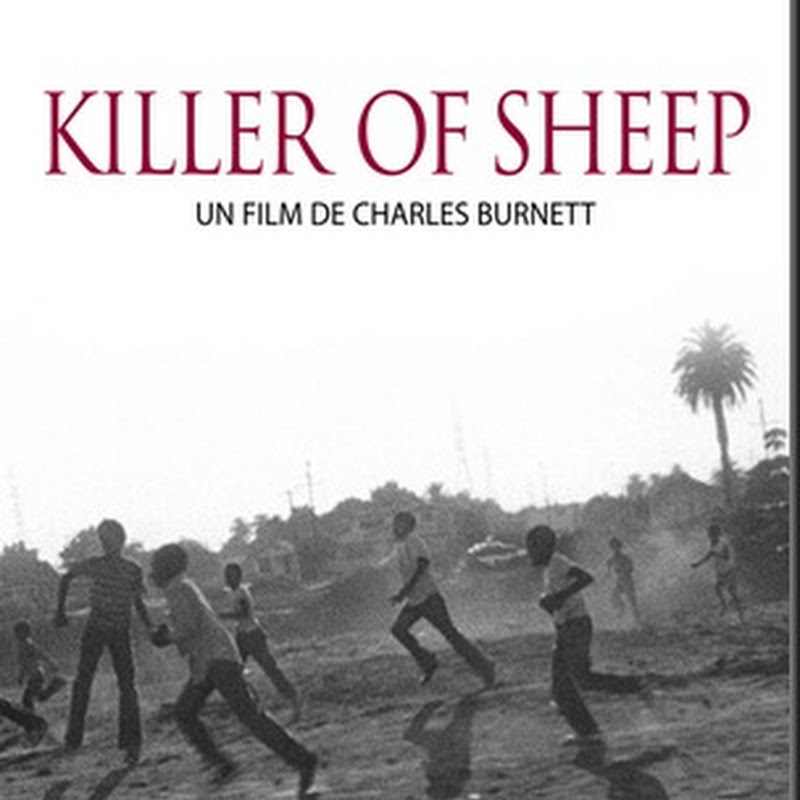 synopsis of killer of sheep Drama director: charles burnett starring: henry g sanders, kaycee moore, eugene cherry and others killer of sheep is an undisputed masterpiece of african-american filmmaking and one of the most poetic, perceptive dramas ever made about family and community.