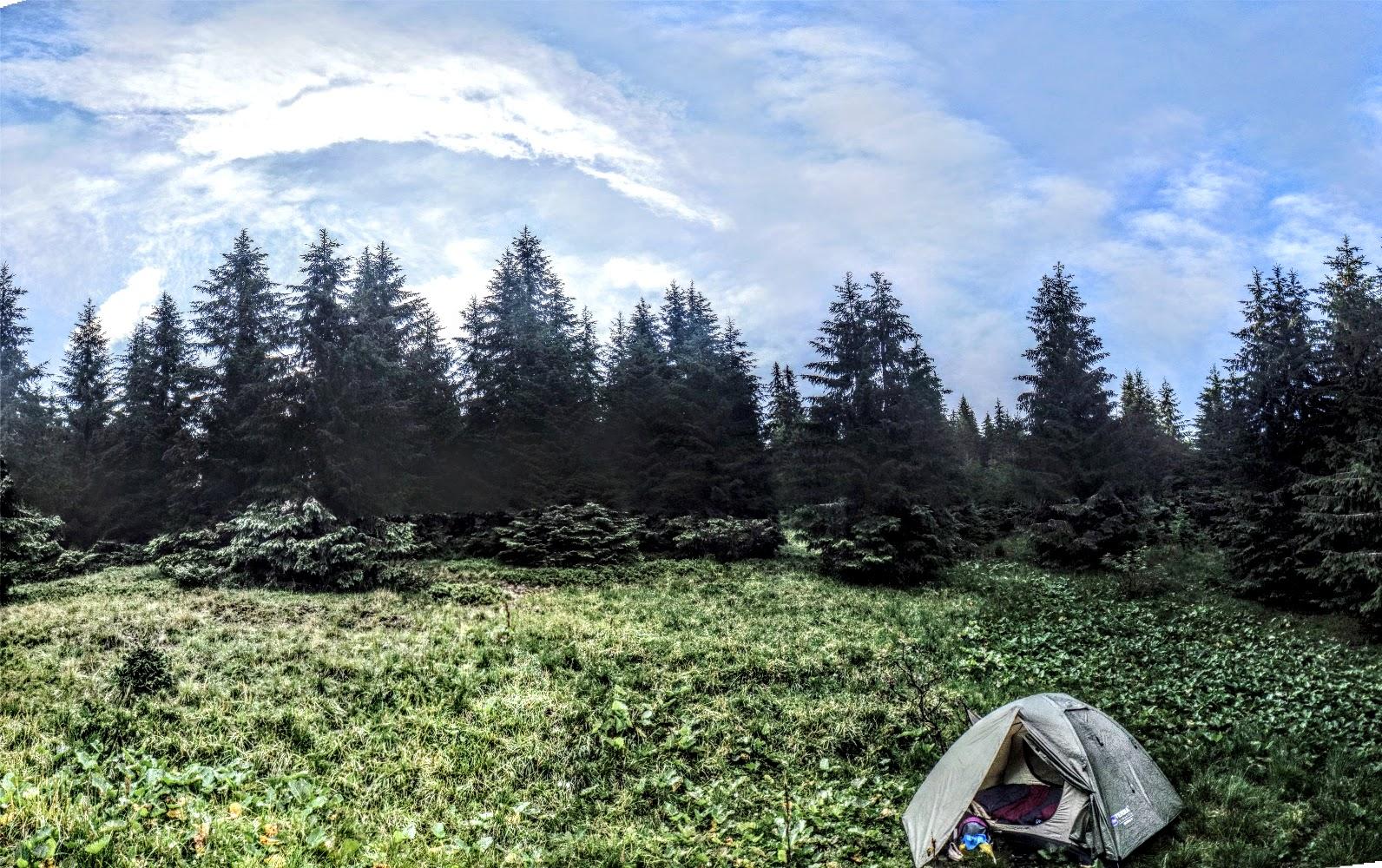 Табір, в лісі біля пс