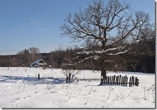 broken fence in snow