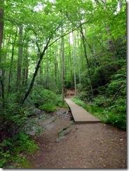 Moore Cove Trail